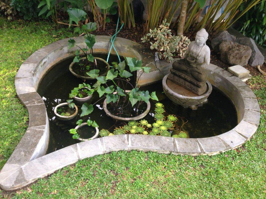 Feng Shui Garden Layout